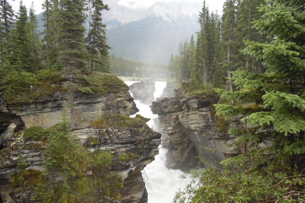 Les spectaculaires chutes Athabasca
