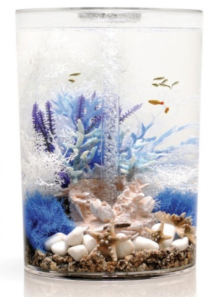 L'aquarium biUbe Pure de neuf gallons