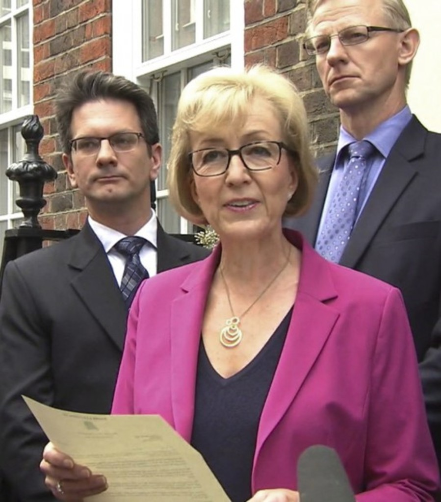<p>Andrea Leadsom</p>
